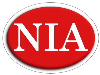 Nevada Insurance Agency Inc. logo